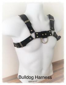 Rubber chest bulldog Harness (New M)