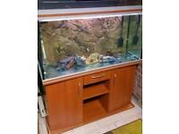 Rena 4ft Fish tank 350 Litres 3d Background