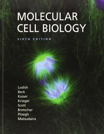 Molecular Cell Biology - Sixth Edition