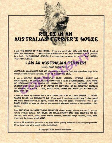 Rules In An Australian Terrier