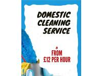 Regular Cleaning From £12/h , End of Tenancy cleaning from £60 , carpet deep wash from £55
