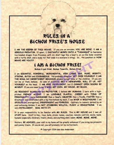 Rules In A Bichon Frise