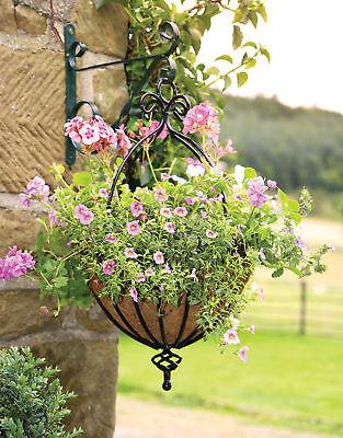 Heavy Duty Scrolled Hanging Basket / Flower basket