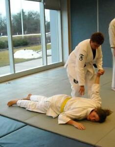 Aiki Ju Jutsu - The Art of Self Defense - Personal Development Peterborough Peterborough Area image 2