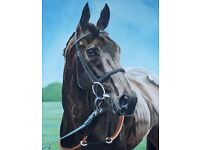 Horse Oil Portraits on stretcherd canvas from photograph