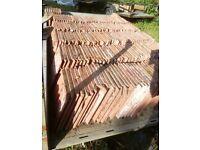 BCC ltd Terracotta Roof tiles x 200+