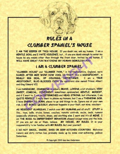 Rules In A Clumber Spaniel
