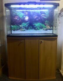 87 litre Aquarium with Oak Cabinet