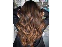 Balayage and Colour Corretion Trade Test Models Required