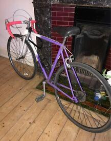 Raleigh Bicycle - Roadbike