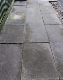 Paving and coping slabs