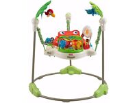 Fisher price jumperoo .