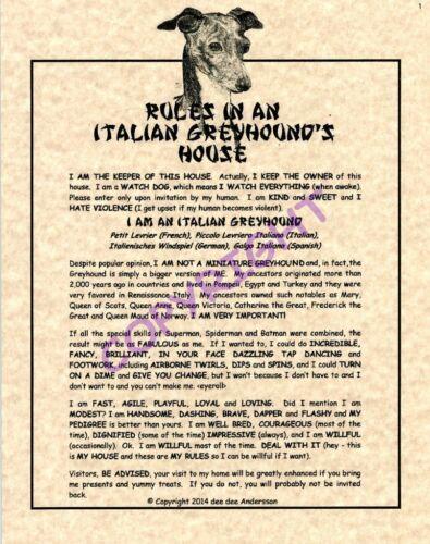 Rules In An Italian Greyhound