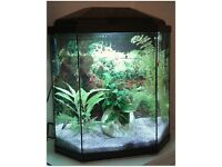 30L Fish Tank (Including live Plants + Accesories: Heater, filter,...)