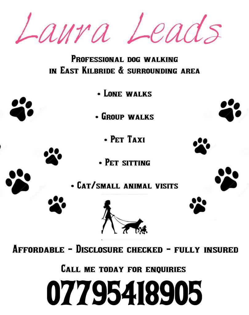 Dog walker and much more!