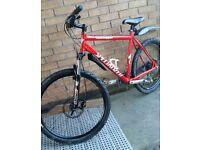 Adults specialized rockhopper mountain bike