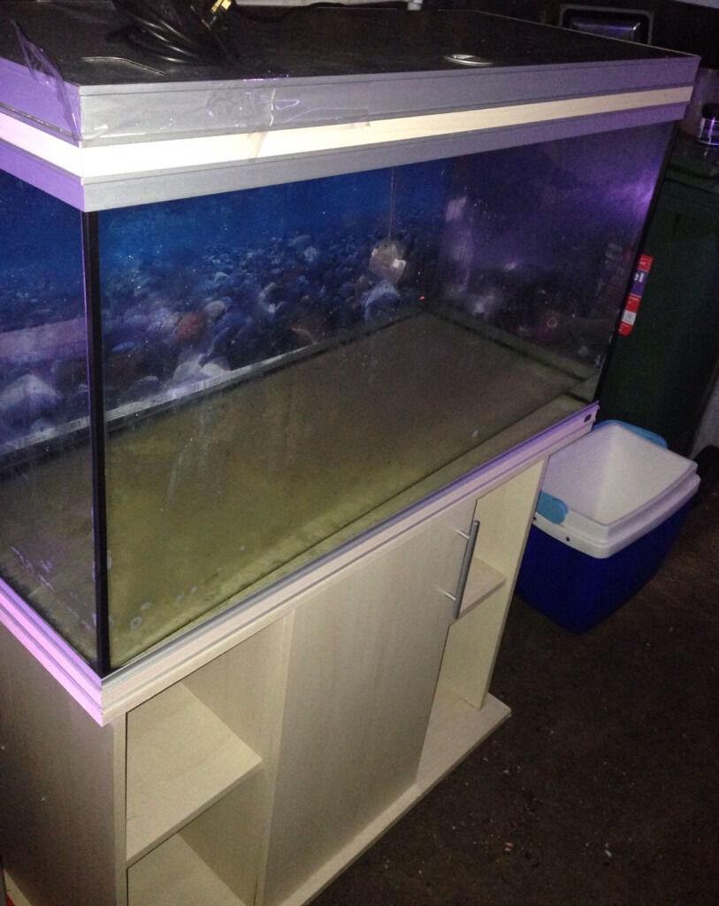 Freshwater fish no filter - 3ft Rena 240 Litre Fish Tank Cabinet Heater Light Unit No Filter