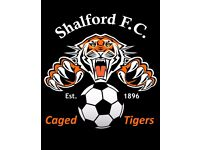 ESTABLISHED SENIOR CLUB SEEKS NEW PLAYERS FOR SATURDAY FOOTBALL IN GUILDFORD AREA