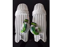 Gray Nicholls Cricket Bag plus Junior Kookaburra Pads and Gloves