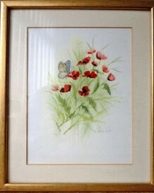 framed poppies watercolour painting