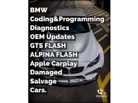 BMW Coding & Programming,Diagnostics OEM Updates/Damaged/Salvage/Breaking Cars.