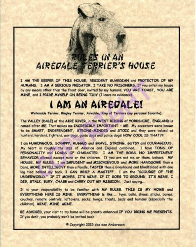 Rules In An Airedale Terrier