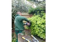 Garden Maintenance, Lawn Care, Tree Surgery and Jet Washing in All London Areas!