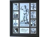 Arnold Schwarzenegger Mr. Olympia poster limited edition signed