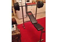 Pro Power weights bench with 35kg weights