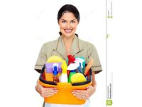 Domestic cleaner/ Hotel housekeeper job wanted