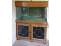 Large Aquarium complete with Fluval 305, custom cabinet, all accessories - just add water and fish