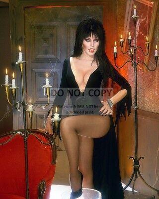 Celebrities Halloween (ELVIRA, MISTRESS OF THE DARK - 8X10 HALLOWEEN PUBLICITY PHOTO)