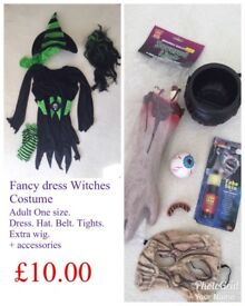 Witches Fancy Dress Costume