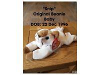 Original 90's Beanie Babies (names & dob on pic)