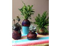 Softpot Workshops