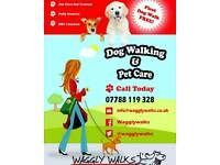 Dog Walker Pet Sitting Pet Care Cat Feeding Cleaning Housekeeping