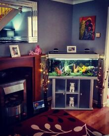 4ft Fish tank & stand