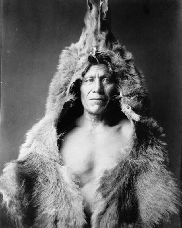 New 8x10 Native American Photo: Bear