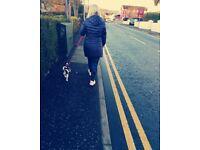 Dog walker Belfast