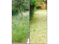 Barneys gardening services
