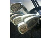 Hippo golf clubs