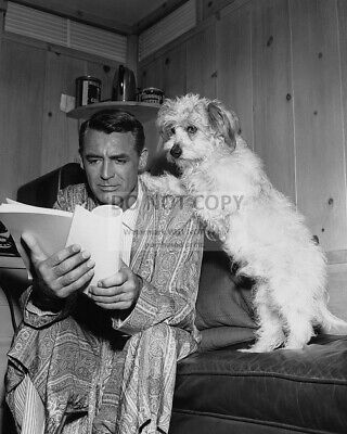 CARY GRANT REVIEWS SCRIPT WITH DOG PAWS ON HIS SHOULDER - 8X10 PHOTO (ZZ-309)
