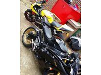2011 Yamaha R6 Black/Gold Akrapovic