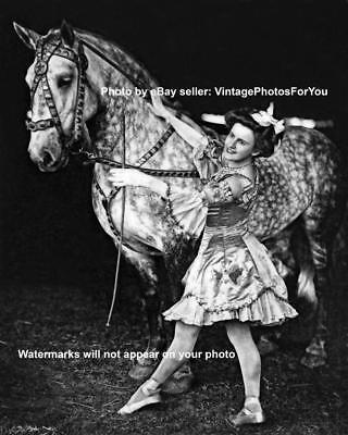 Circus Horse Costume (Antique Vintage Old Beautiful Circus Bareback Trick Horse Rider Costume)