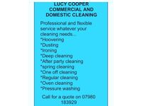 Lucy cooper cleaning
