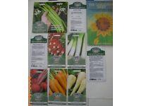 10 packs (£20) Vegetable Seeds Garden Allotment - Bristol (Oldland Common)