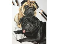Hand Drawn Pet Portraits by Emma - Dogs, Cats, Horses