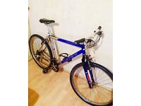 Carrera bike in exellent condition it can be deliver it