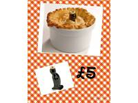 Pie Blackbird