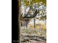 Wildlife & Cityscape PhotoExhibition